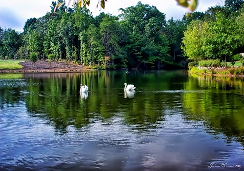 lake swan northcarolina hdr saponacountryclub jeanetterunyon