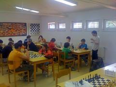 O šachovou královnu