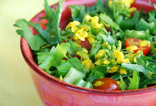 spicy mizuna and broccoli flower salad   by Food Blogga