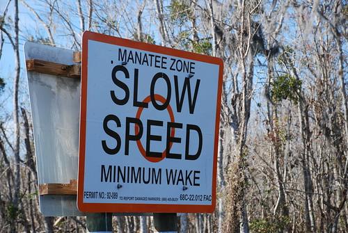 Manatee Zone | by Joe Shlabotnik