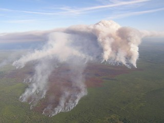 Georgia: Honey Prairie fire at Okefenokee | by USFWS/Southeast