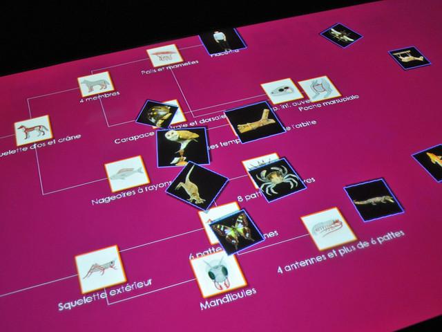 Table tactile multi-utilisateurs (Muséolab du Centre Erasme)