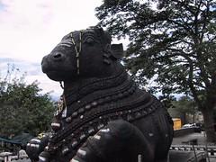 Mysore 09