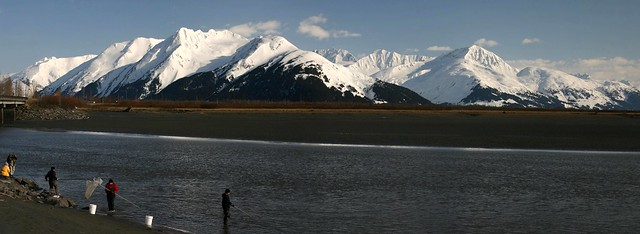 Panoramic shot of Hooligan fishermen on the Placer River along Turnagain Arm (view on Large)