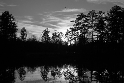 new blue trees winter bw orange lake yellow last reflections georgia dusk year ducks sunsets happiness thoughts 08