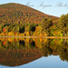 Autumn in the Catskills by mpflies2