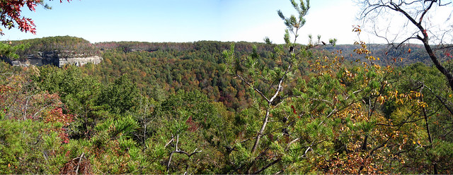 Looking North, Top of North Twin Arch, Big South Fork NRRA, Scott Co, TN