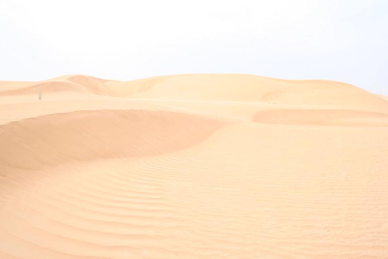 Desert 035