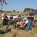 Planiting the Gathering Tree