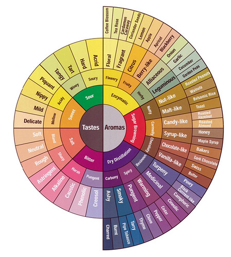coffee tasting flavor wheel by wholelattelove.com | by visual think map