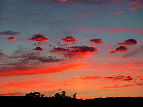 blue trees sunset red strange silhouette clouds odd shape newpaltz goldenglobe