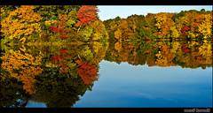 Autumn reflection   by Mező, Kornél (mostly away)