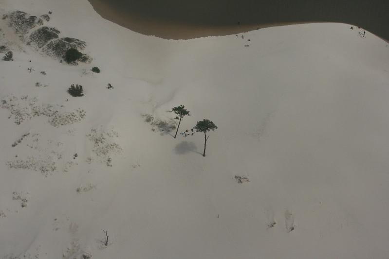 El pinar, desembocadura del arroyo pando