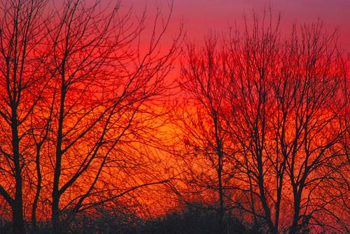 uk england sky clouds nikon surrey guildford d60 blueribbonwinner nikond60 astoundingimage colorfullaward