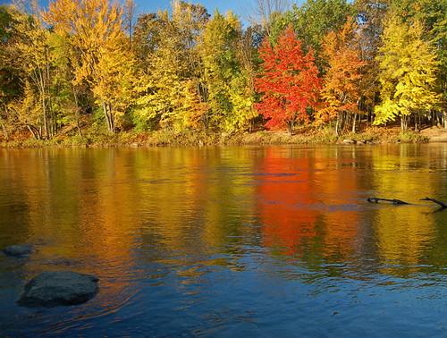 autumn color reflection water newengland newhampshire foliage saco sacoriver mywinners impressedbeauty ysplix multimegashot vision100 vosplusbellesphotos