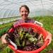 Food Hub: Amy's Organic Garden