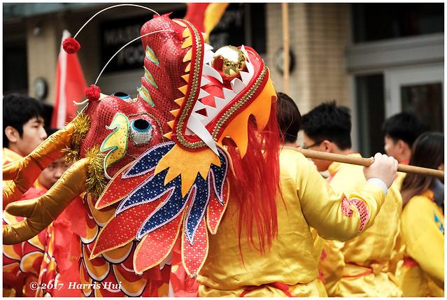 Hidden Dragon 藏龍 - Chinatown XP6063e