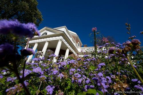 flowers architecture virginia unescoworldheritagesite charlottesville monticello thomasjefferson canon30d canonefs1022 aia150 palladianarchitecture