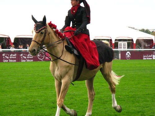 PARIS - Longchamp