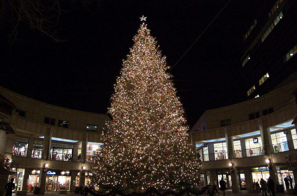 Quincy Market Christmas Tree | View On Black | Andy | Flickr