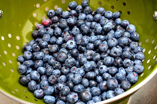 blueberries, rinsed | by smitten kitchen