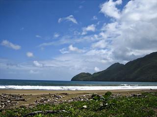Empty Beach in Samana, DR