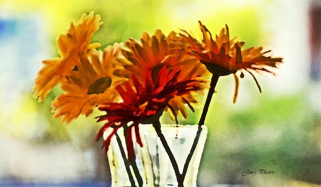 Coffee house flowers