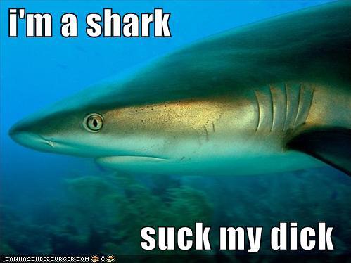 Can im a shark suck my dick