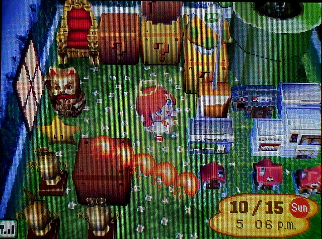 Animal Crossing Wild World A Rather Cluttery Collection