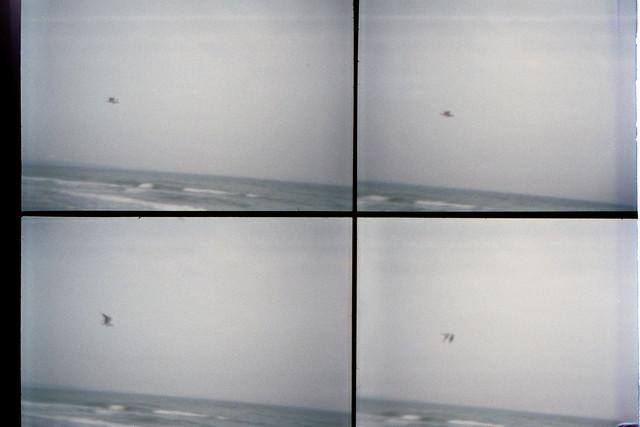 Als die Bilder fliegen lernten