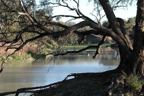 Darling River camp site near Kinchega, in the National Park.