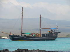 Sulidae - the 1901 yacht we sailed on in the Galapagos