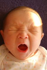 Isaac yawns. Eight days old. by Chris Devers