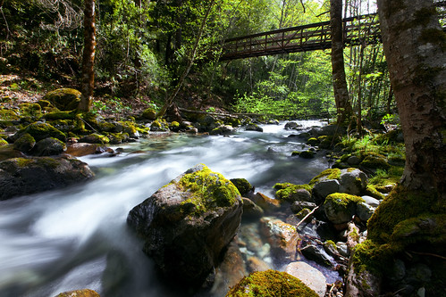 life travel nature water oregon river landscape outdoors hiking lifestyle pointofview editorial environment portfolio