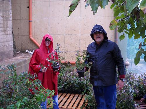 Talal & Sara checking plants at Nursery b Dec 10, 2012   by toutberryfarms