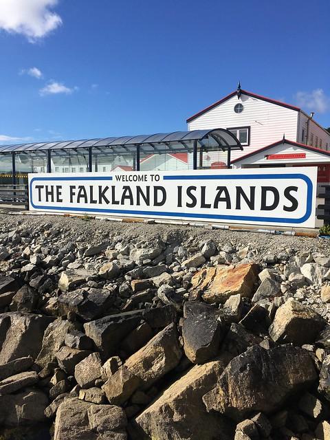 Pajareando en Malvinas / Birding in Falklands