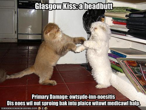 Scottish Slang #1: Glasgow Kiss | muriell | Flickr
