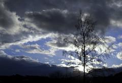 Dark Clouds Hanging In The Sky VII