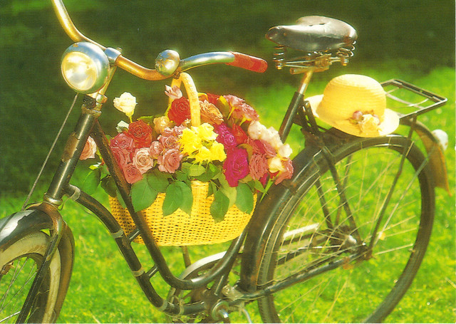 Bicycle with Hanging Basket of Flowers Postcard