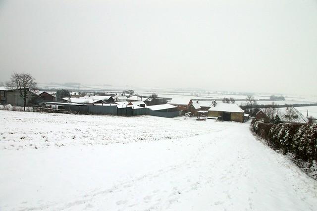 imgp8125 - Nature Walk Snow