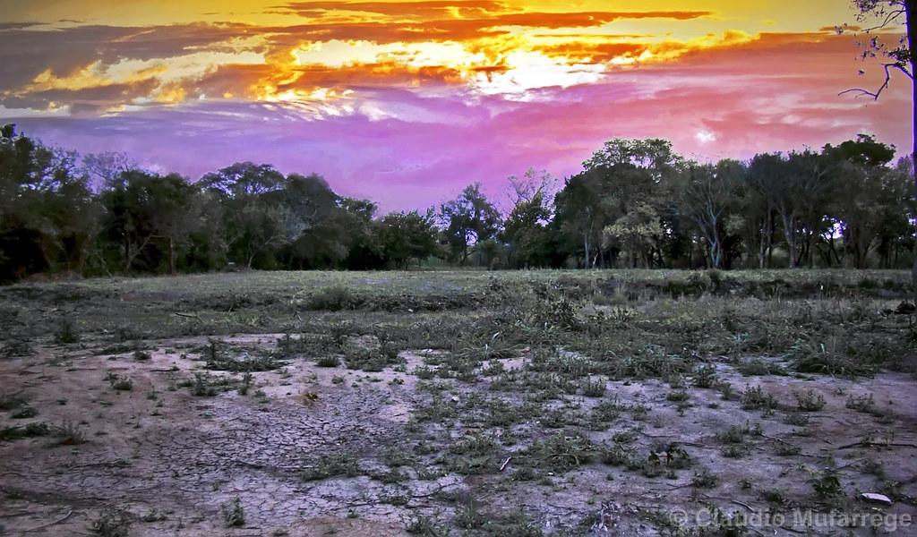 Sequía/Drought by Claudio.Ar