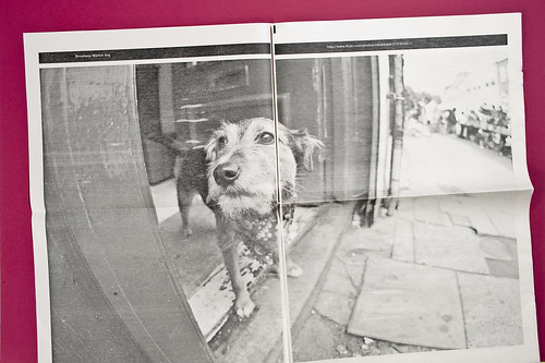 Things Our Friends Have Shot On Flickr by Newspaper Club | by Newspaper Club