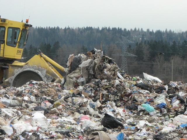 Landfill 031