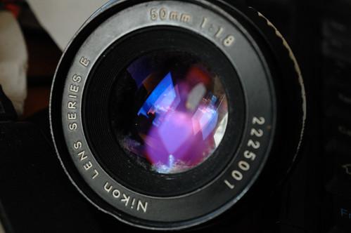 50mm Series E Fungus   by JTD121