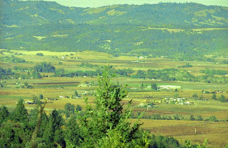 Napa Valley, California, 1990