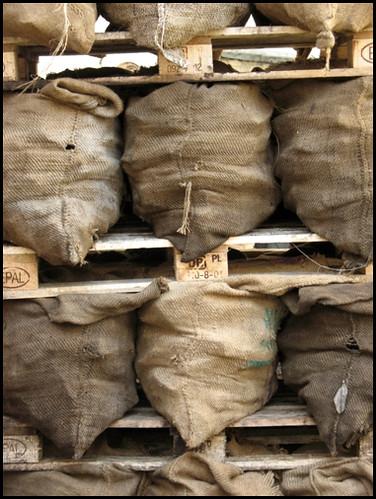 Kohlesäcke