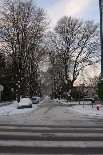 December 18, more snow...   by sabel
