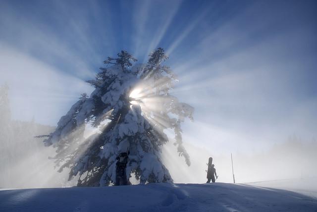 Entre brume et soleil (3 photos)