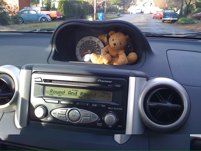 Travel Bear Hits the Road