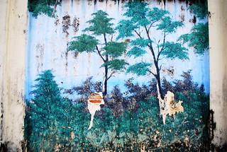 Pudu 's Wall